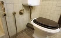 Зачем нужен гигиенический душ в туалете